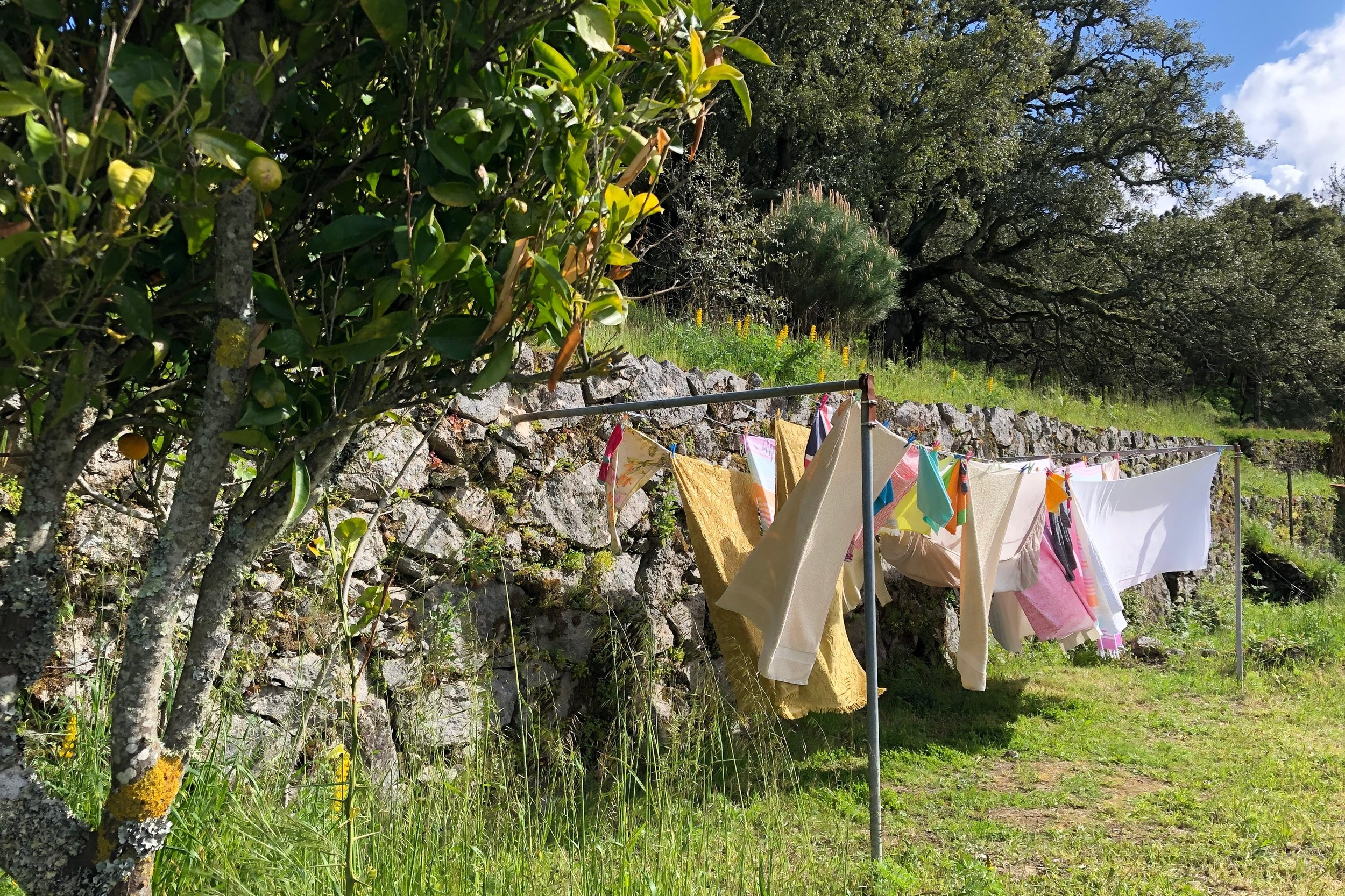laundry service - Washed, dried in fresh mountain air, folded and on your bed by sunset.Bring your bag to us at breakfast. 7 € per load.