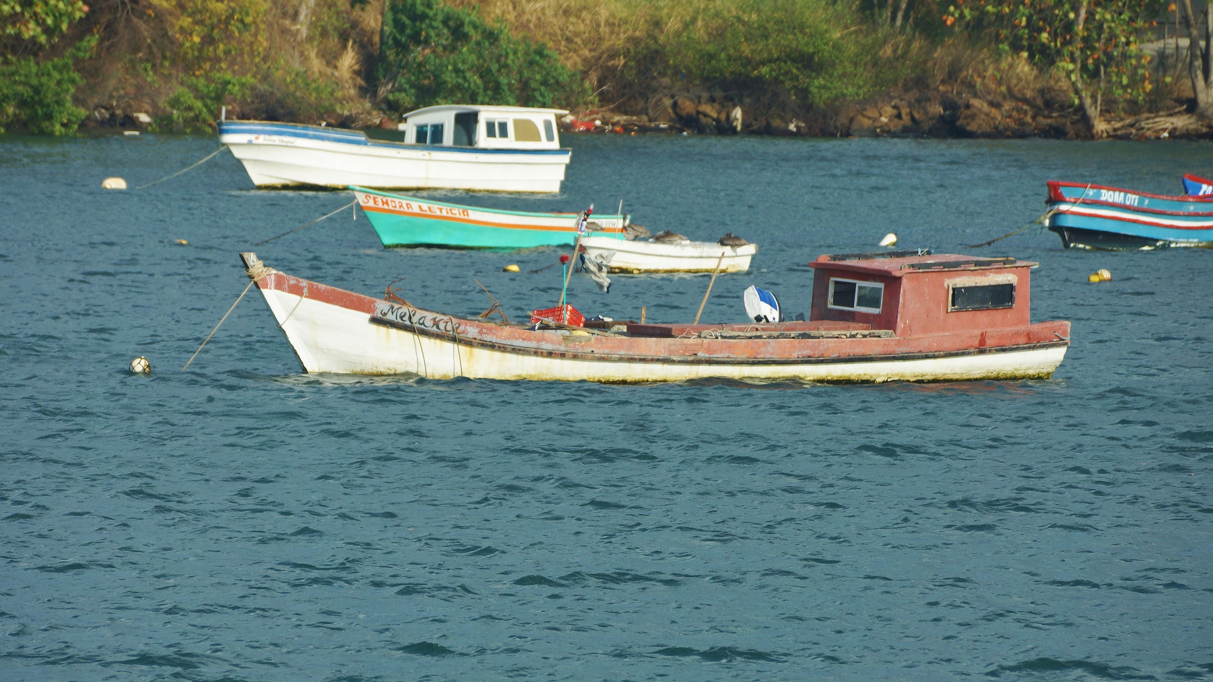 Boats in Panama (Chumlee10 - Flickr)