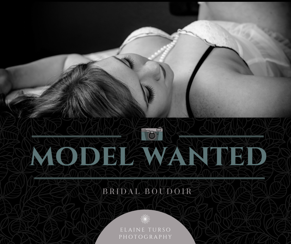 model wanted.png