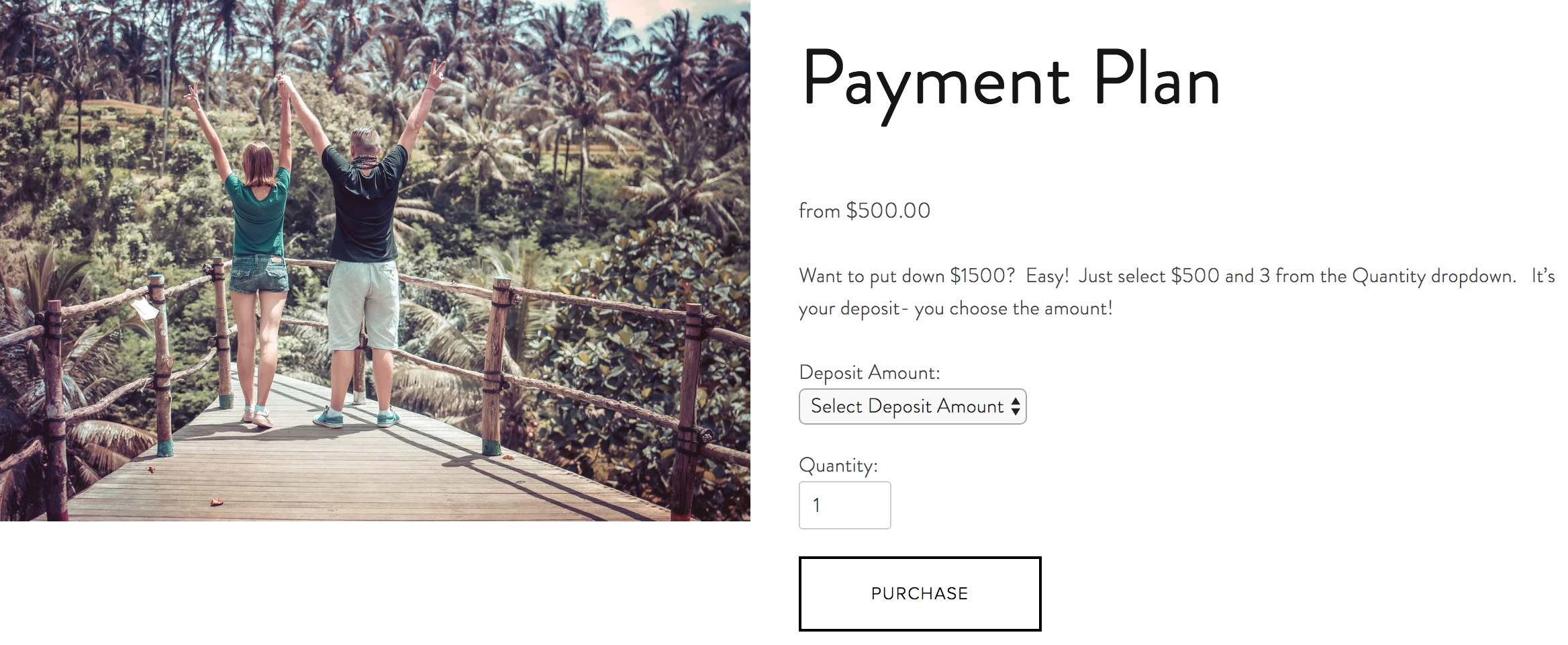 Whisked Away Surprise Travel Payment Plan