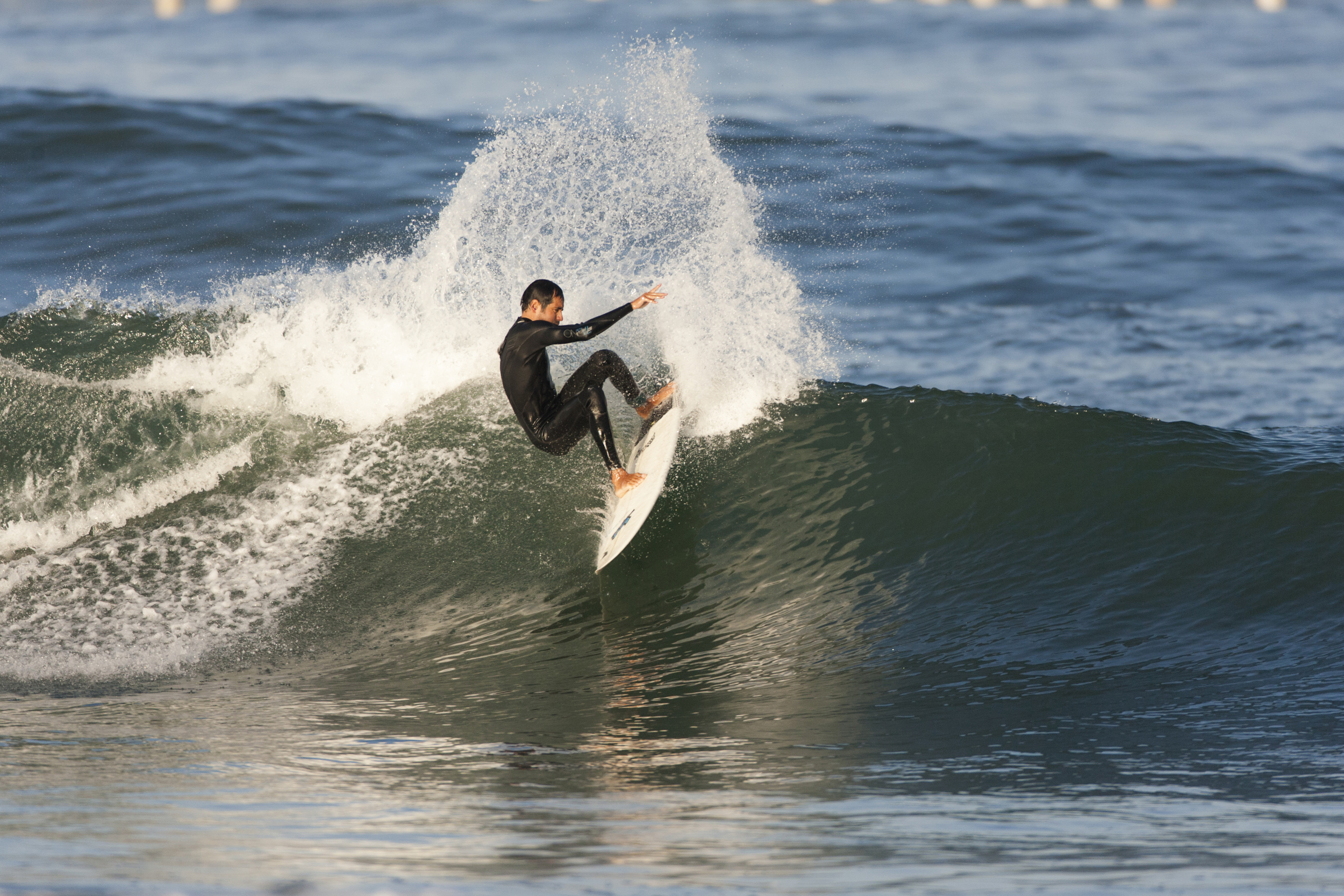 alfredo surf