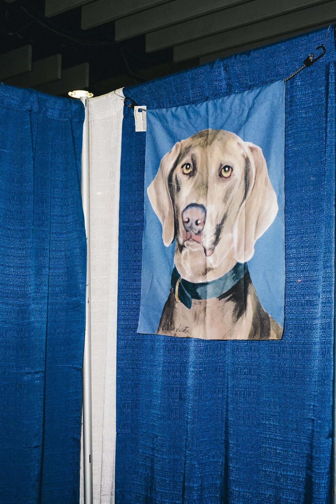 westminster-meet-greet-dogs-14.jpg
