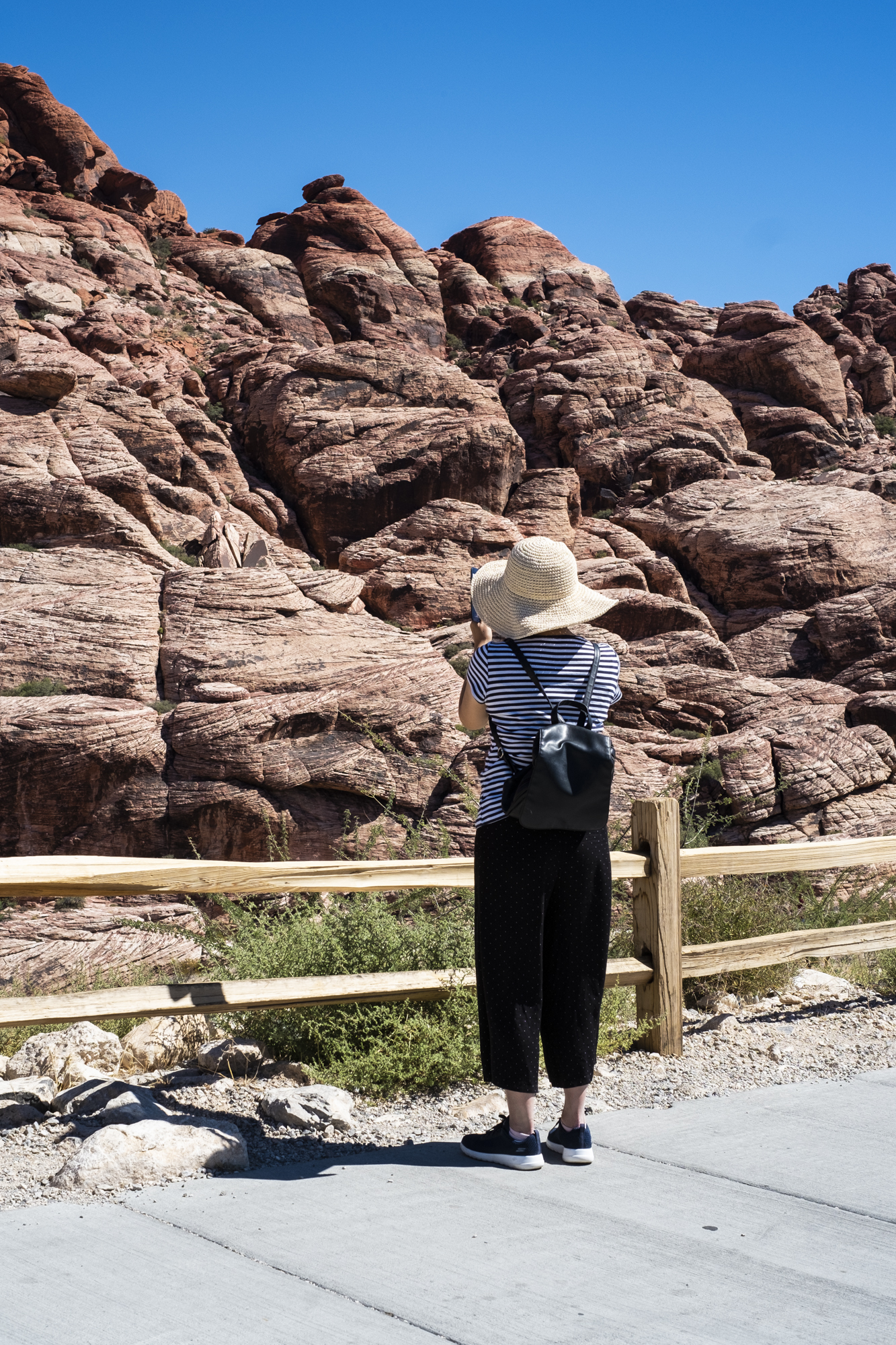red-rock-canyon tourist.jpg