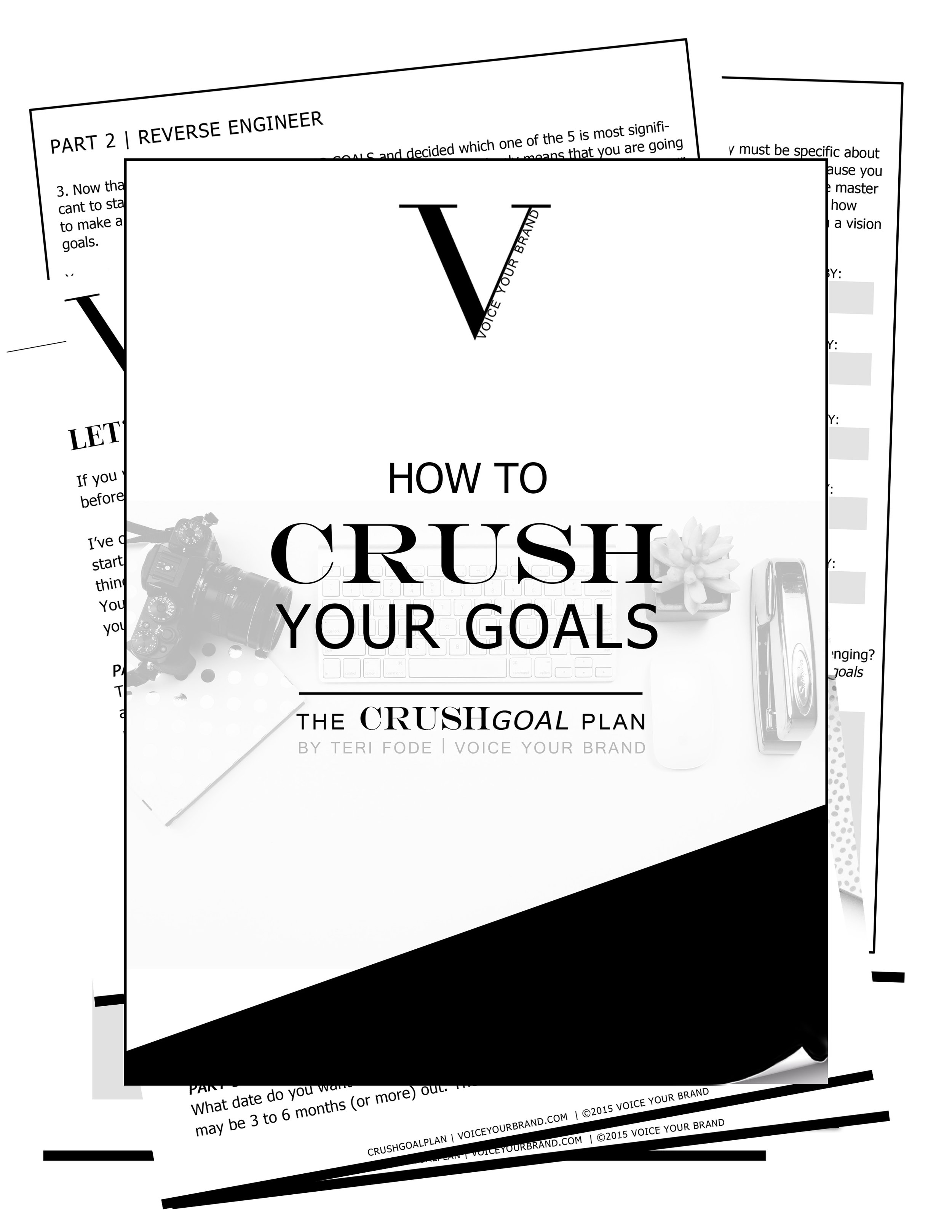 If you want to CRUSH your goals like never before this 5-Step plan will guide you in implementing daily tasks to realize those business goals that keep eluding you. Apply this system to your life and you'll be achieving your goals for real this time.
