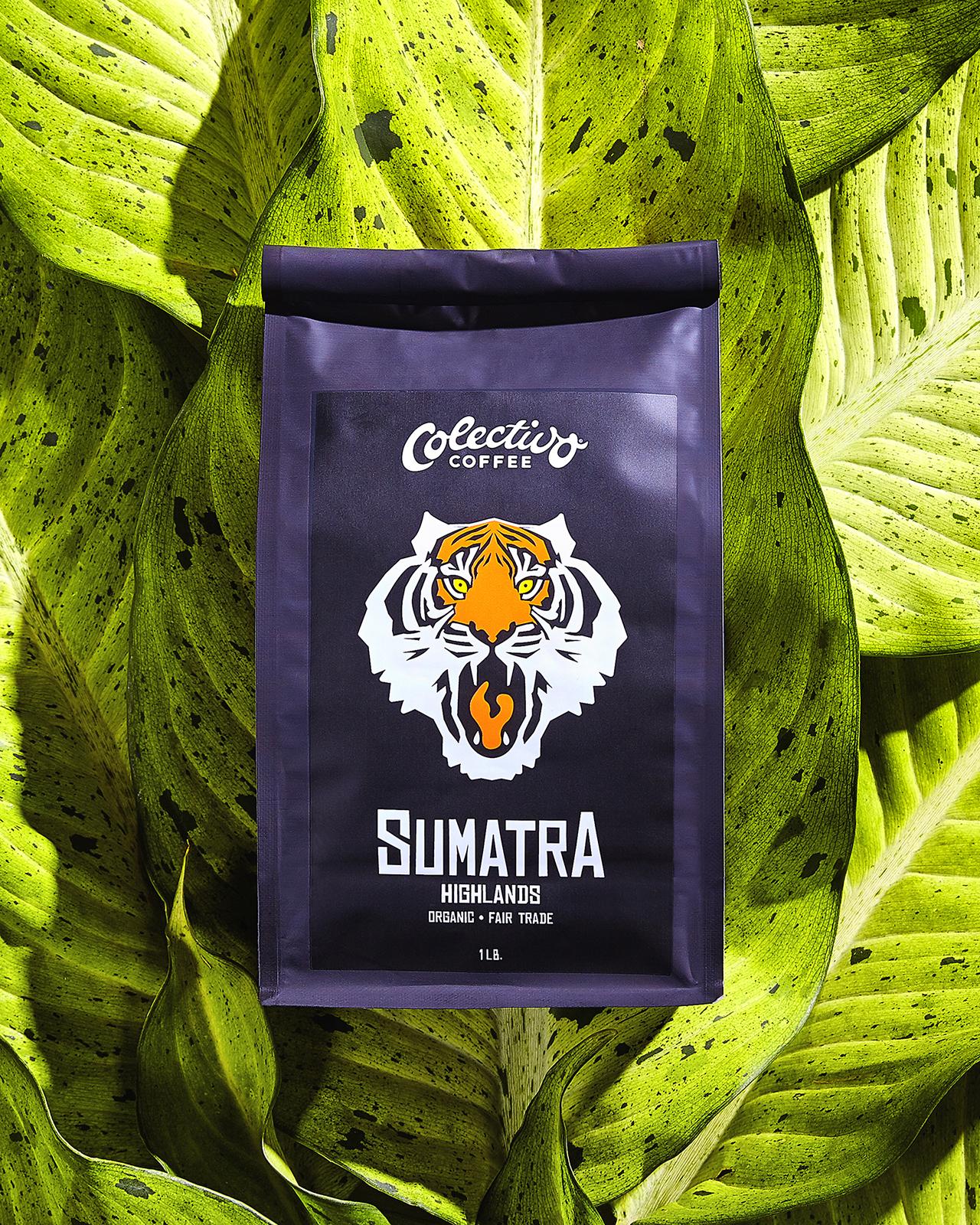 Sumatra_1600p.jpg