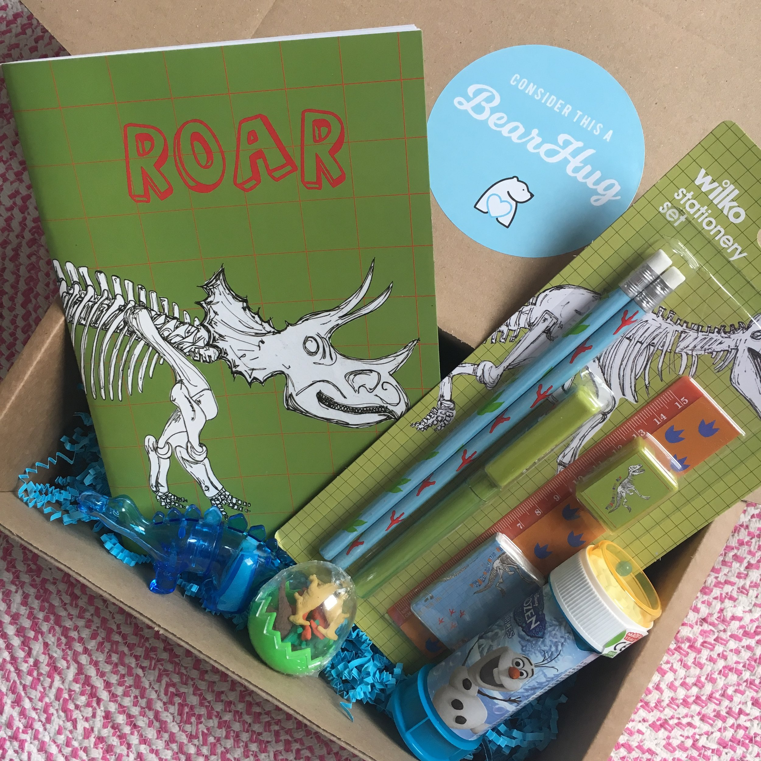 dinosaur gift package for post pals child