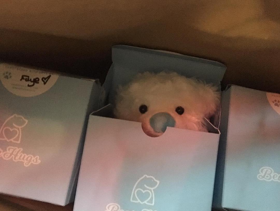 bearhugs gift donations charity friend finder hug in a box.jpg
