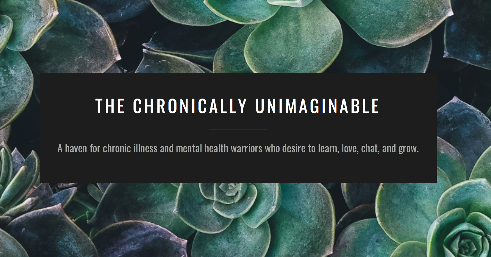 bearhugs chronically unimaginable review gift boxes to send by post chronic illness.png