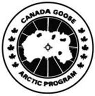 canada-goose-arctic-program-78584861.jpg