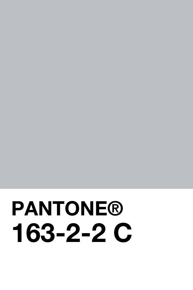 pantone grey.jpg