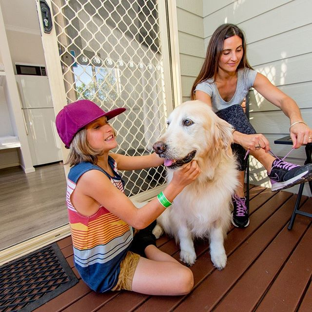 DID YOU KNOW that many of our parks are pet friendly? 🐶 That means you man bring your four legged friend along with you!⁠ ⁠ LINK IN THE BIO to find out which parks!⁠ ⁠ #ExploreBIG4 #BIG4 #BIG4HolidayParks #SeeAustralia #Pets #Dogs #TravelWithPets #PetFriendly