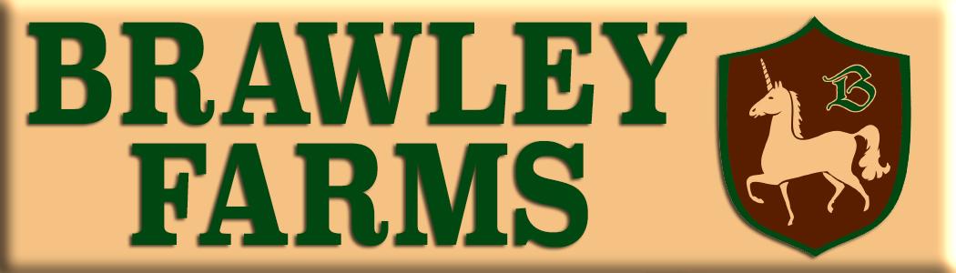 brawley logo 3.5 x 1 for web.jpg