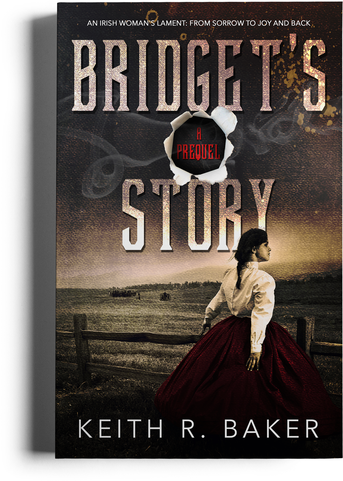 Bridget's Story by Keith R. Baker