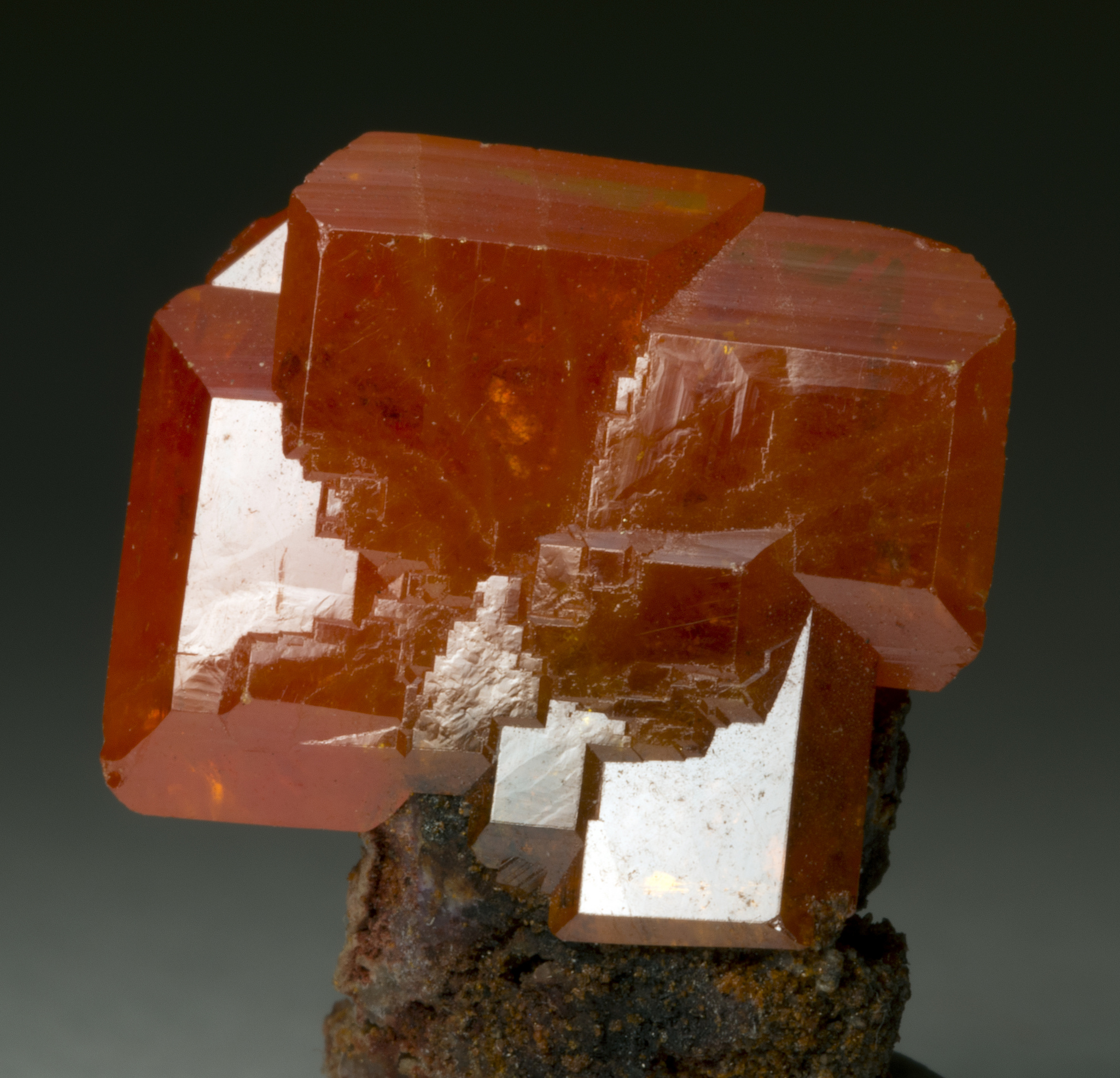Wulfenite from Red Cloud Mine.jpg