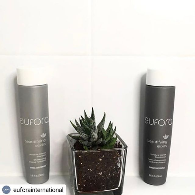 I don't know if you have heard but we are a Eufora salon. 😉🌿 #Repost @euforainternational • • • • • Moisture Intense Shampoo and Conditioner ✨⁣ .⁣ .⁣ 📸 : @styledbyoliv + @lalumasalonandacademy⁣ .⁣ #eufora #euforastrong #euforahaircare #euforastyle #euforapro #hairinspo #natureinspired #naturalattraction #beautifyingelixirs