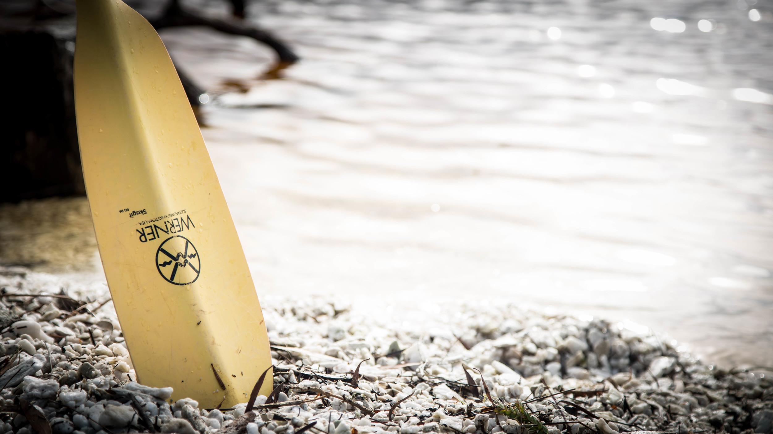 Wild Pedder - Kayaking Lake Pedder