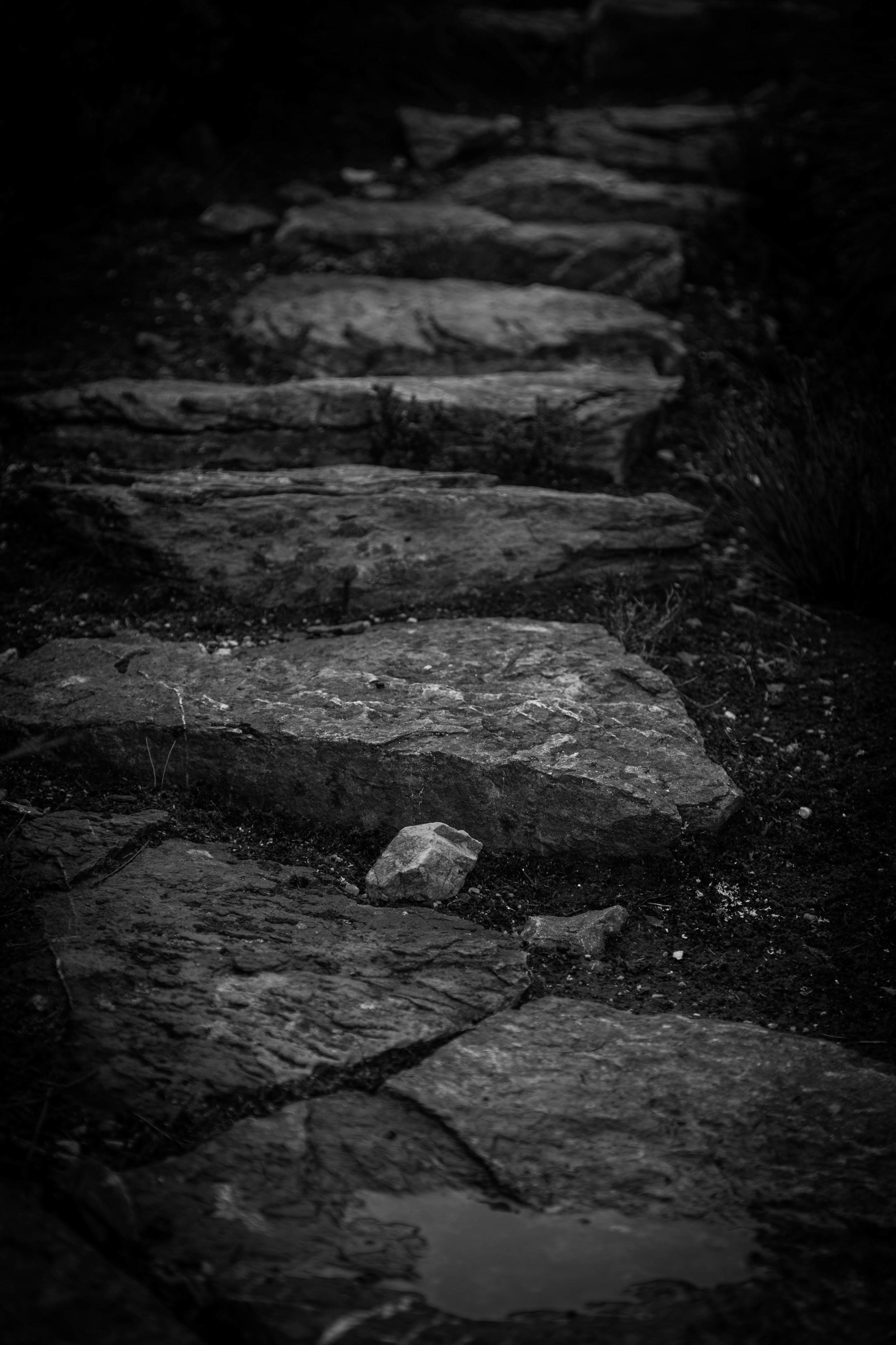 Wild Pedder - Stone track to Mount Eliza