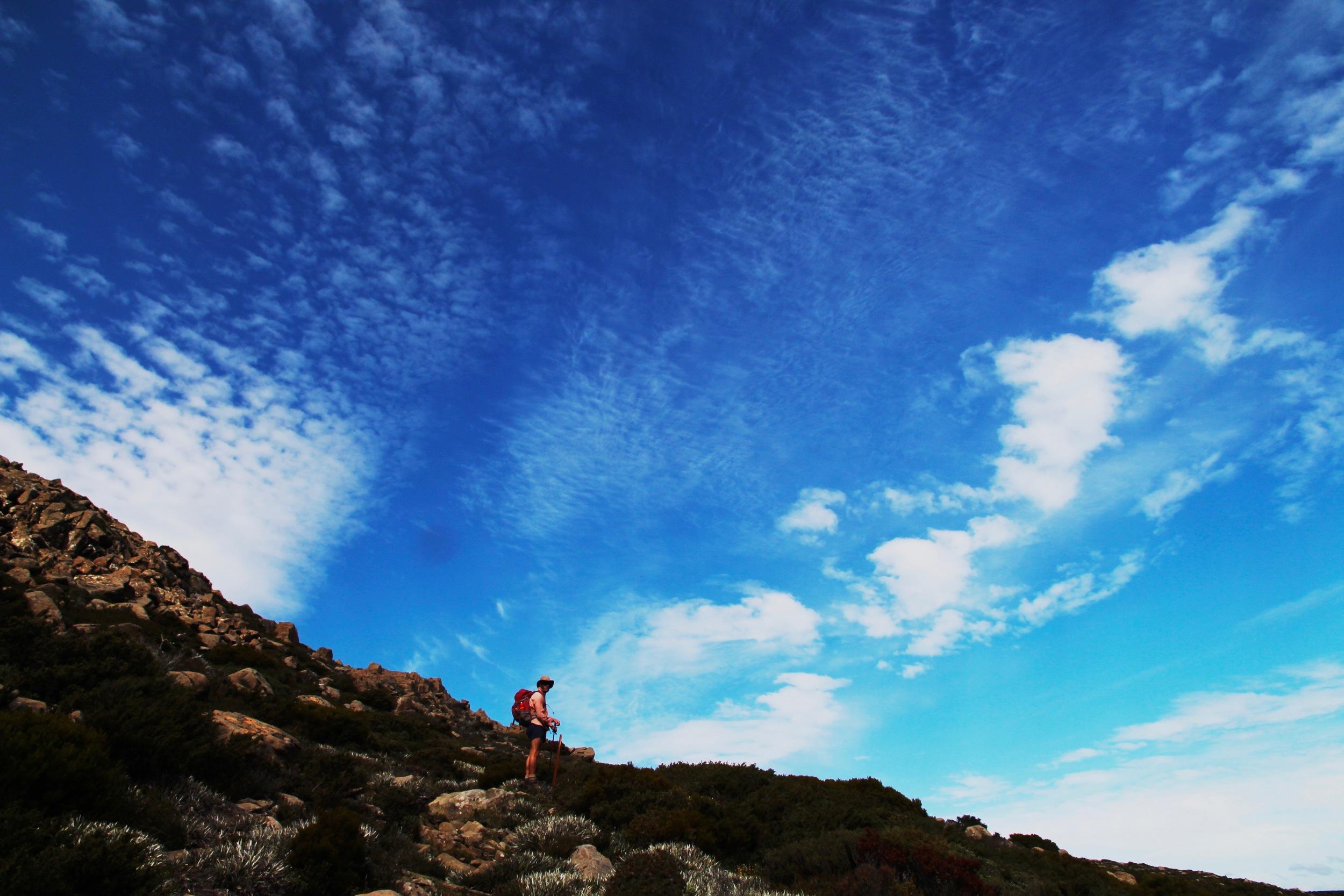 Wild Pedder - Rodway Range, Mt Field National Park