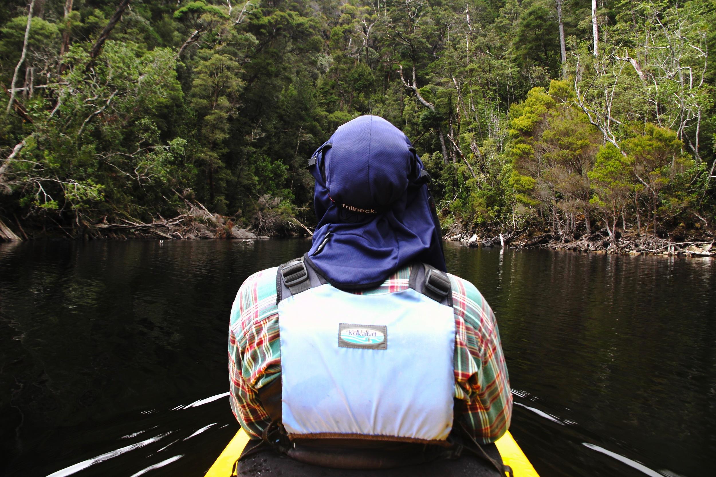 Lake Pedder - Wild Pedder