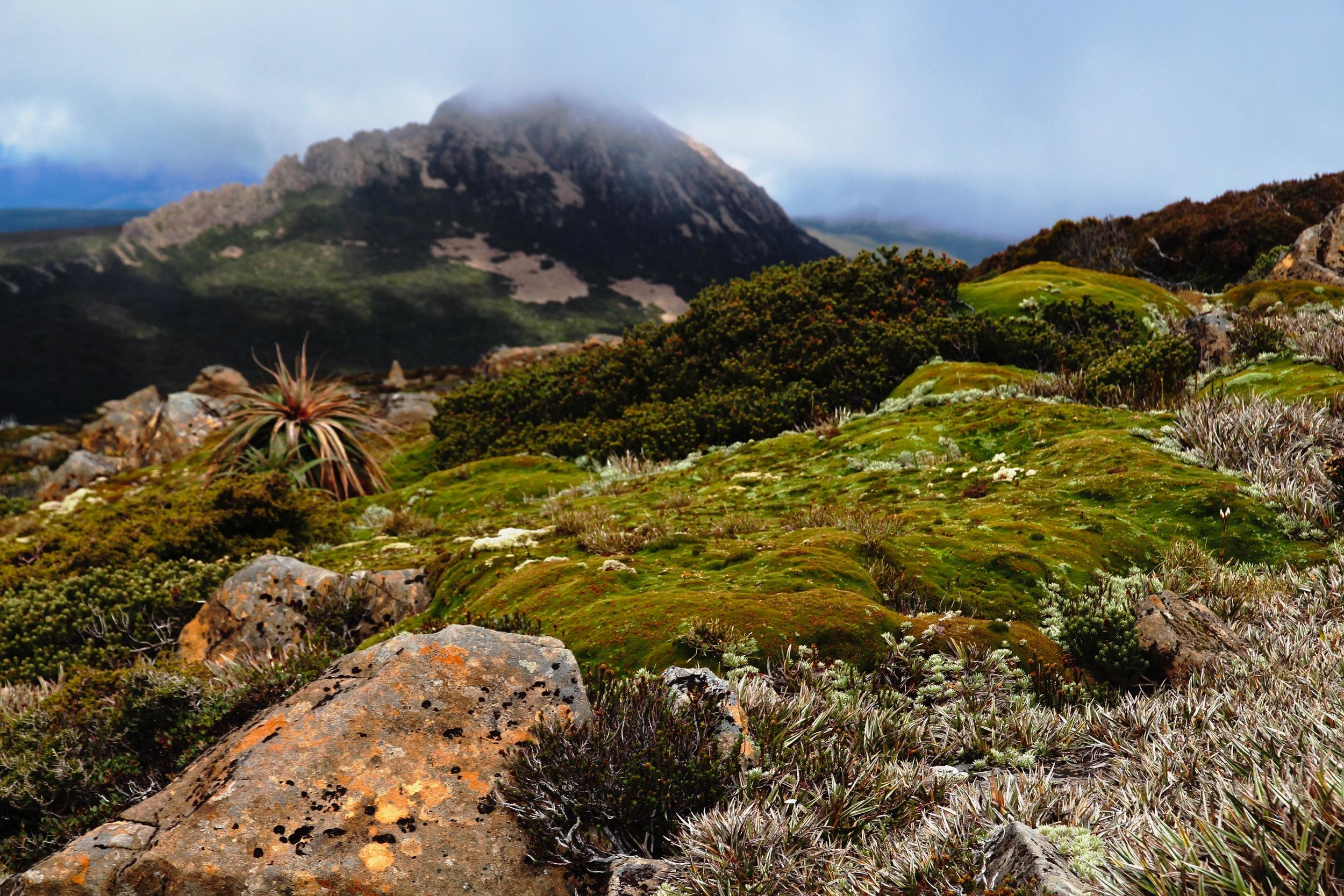 Mt Anne - Southwest Tasmania