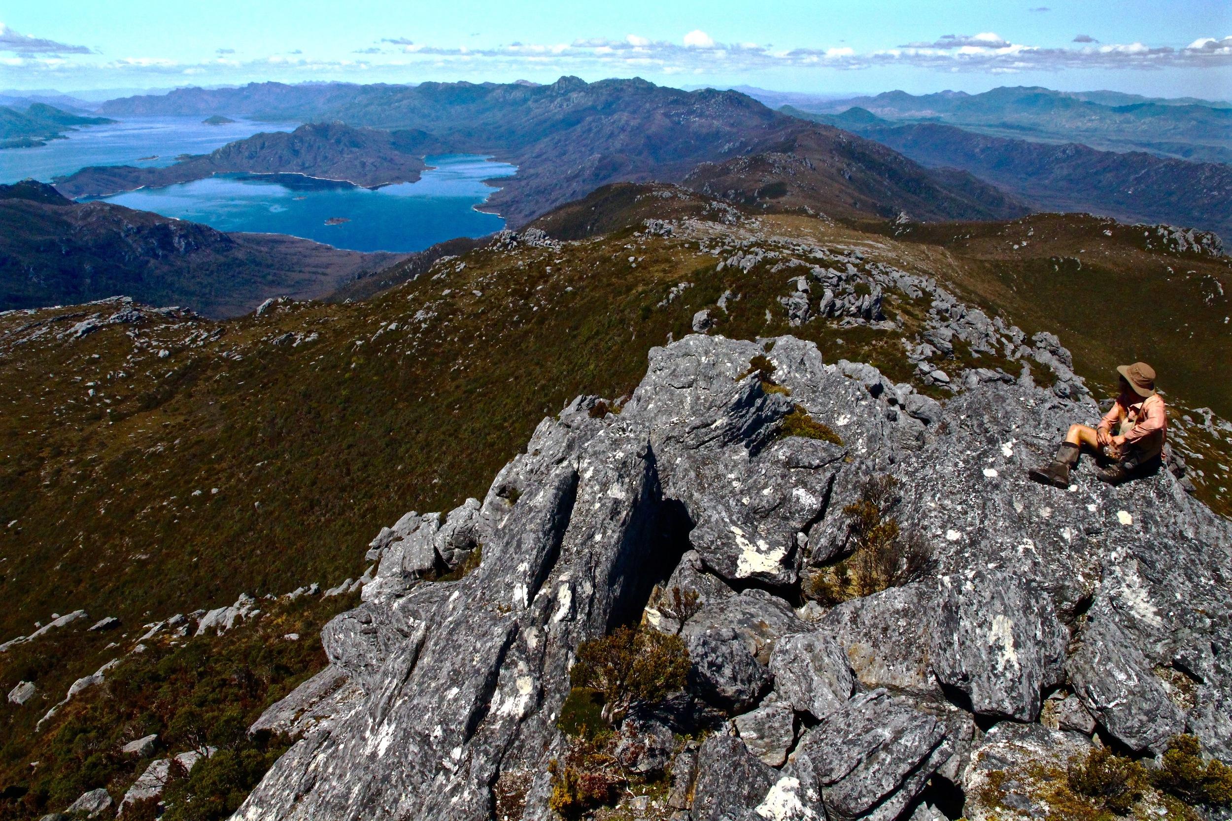 Wild Pedder - The Frankland & Wilmot Ranges from Mount Sprent