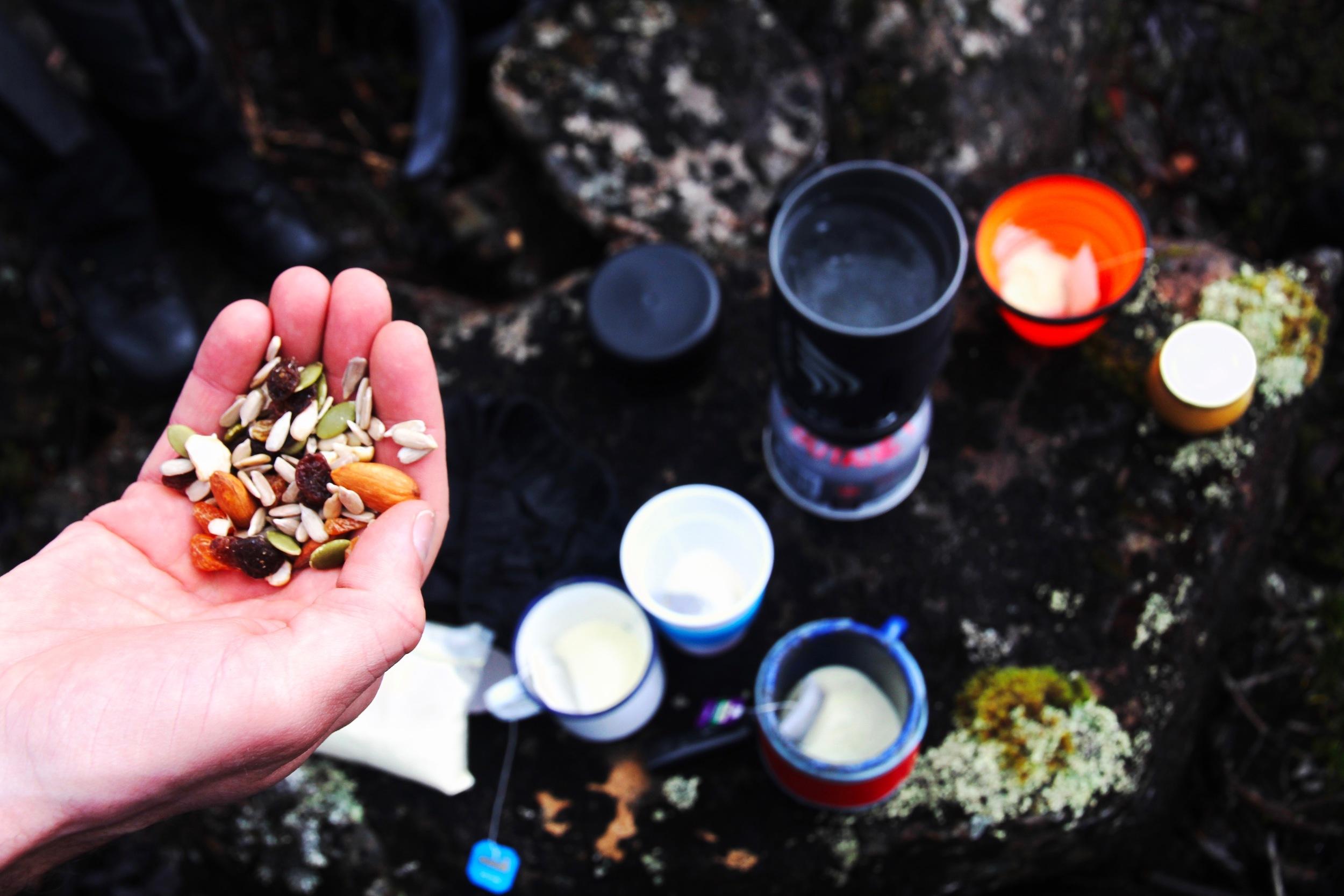 Mount Field National Park Tea 'n' Snacks