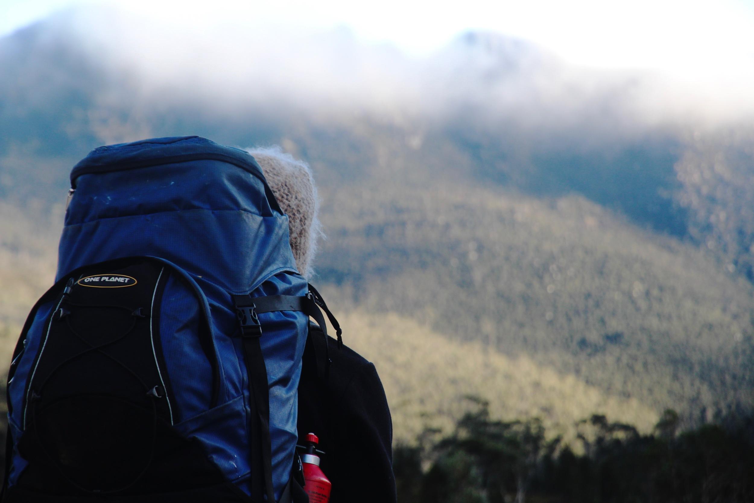 Wild Pedder Guide; Wild Mount Field National Park