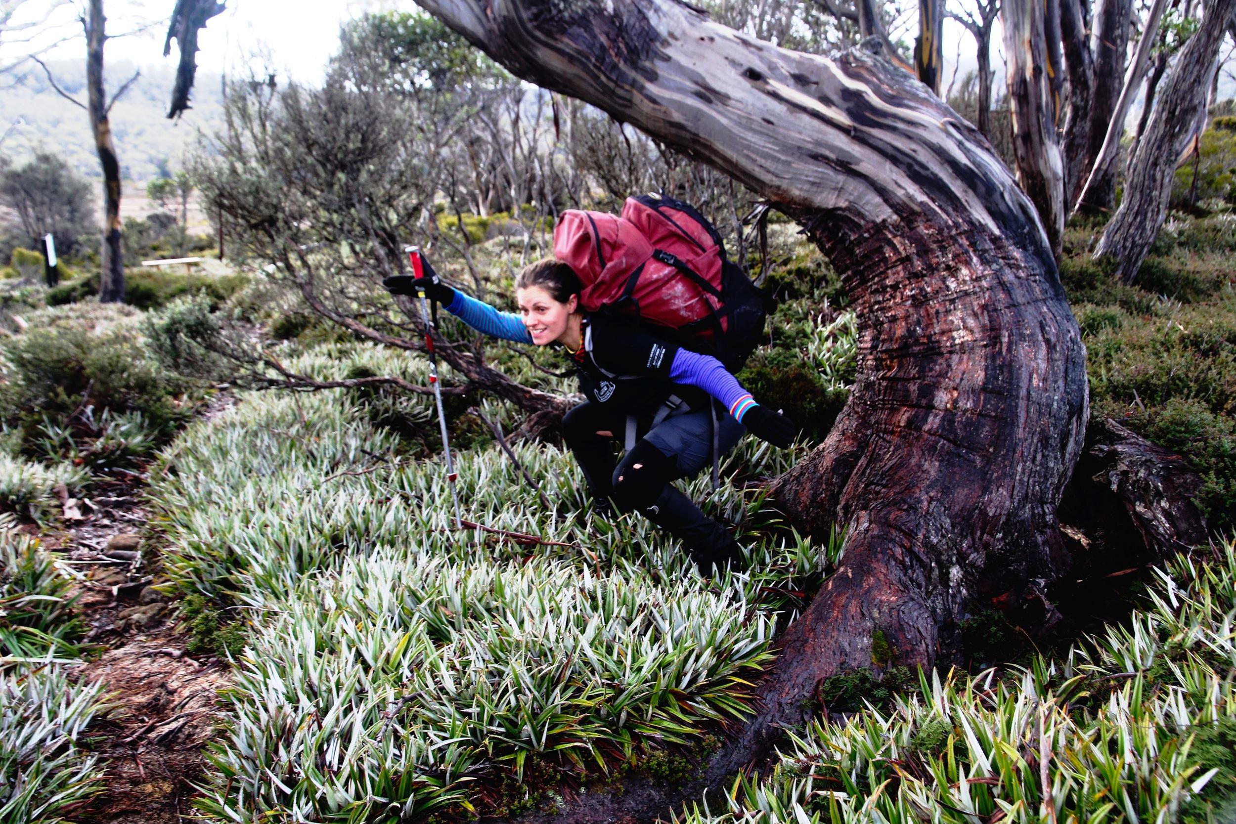 Anita riding the Eucalyptus wave!