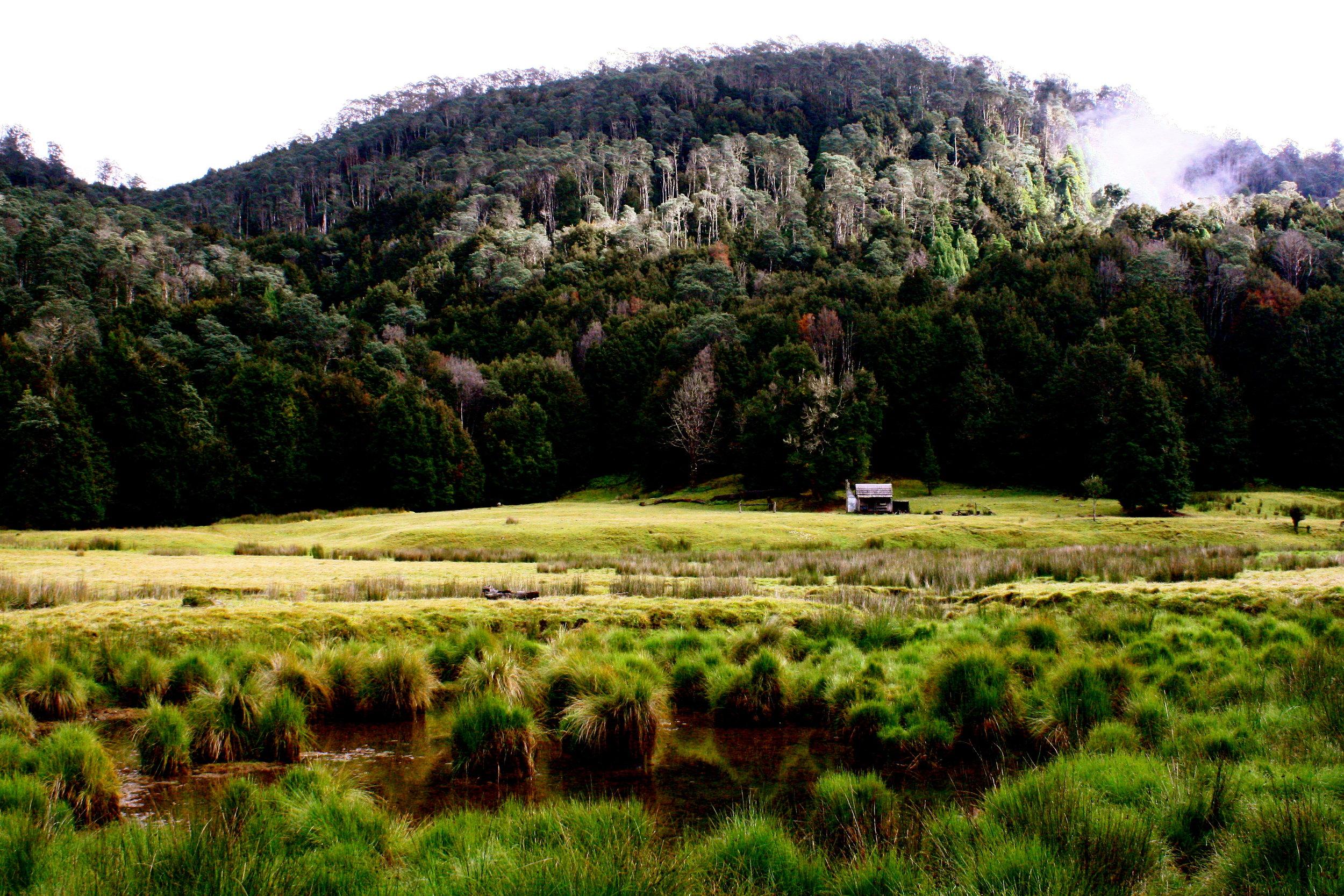 The contrasting landscape
