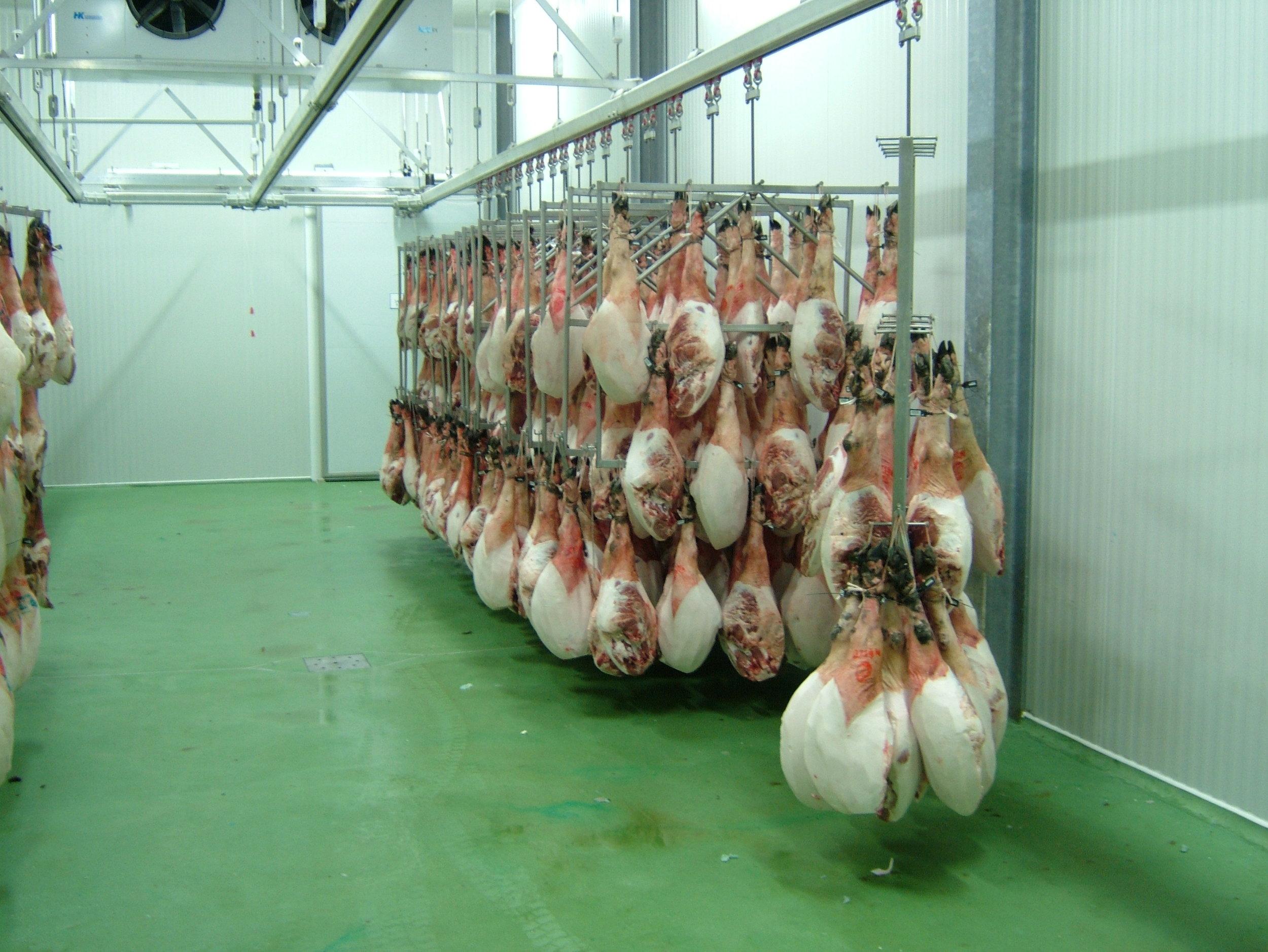 Receiving Area for Fresh Hams.JPG