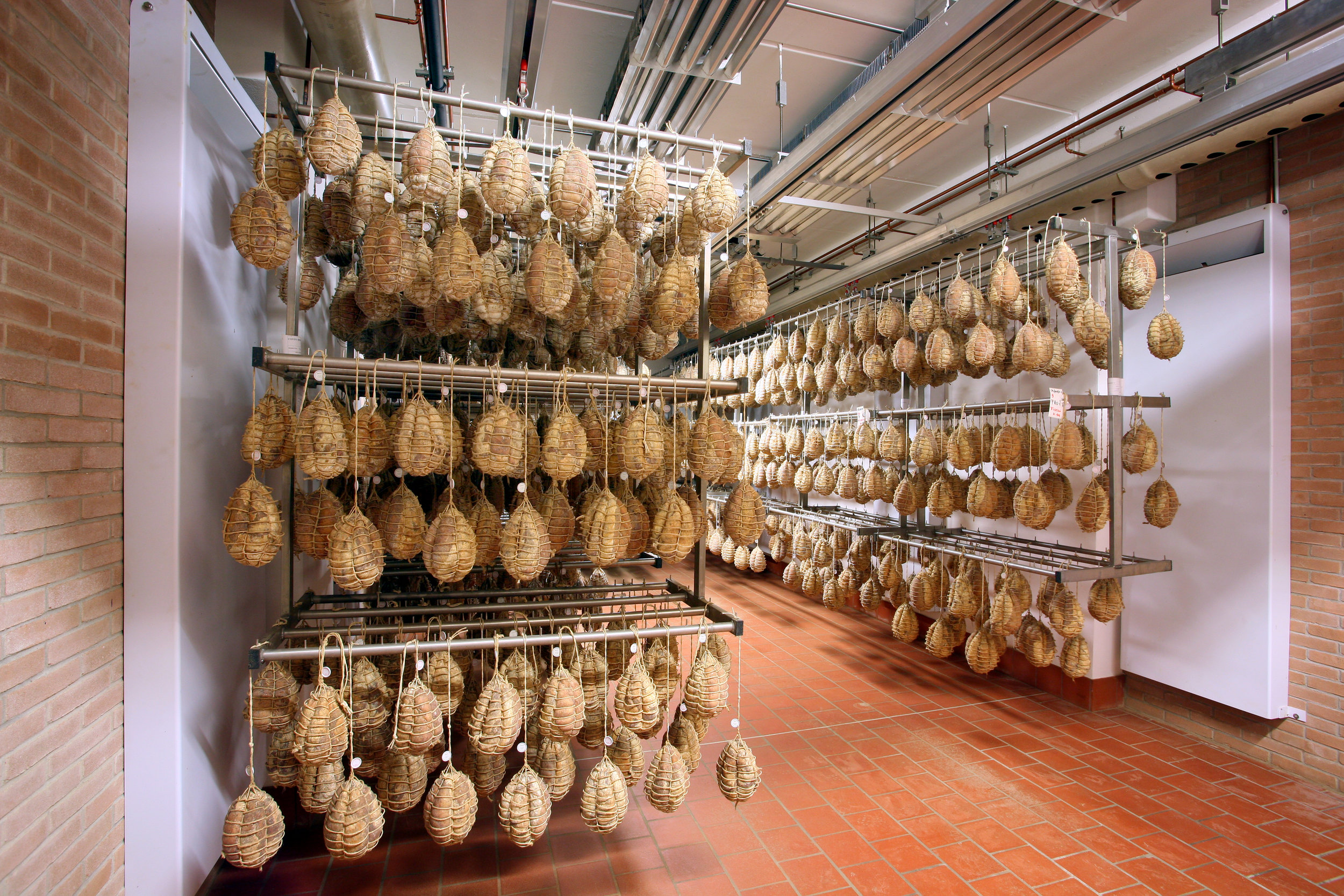 Parmesan -Coppa- During the Curing.JPG