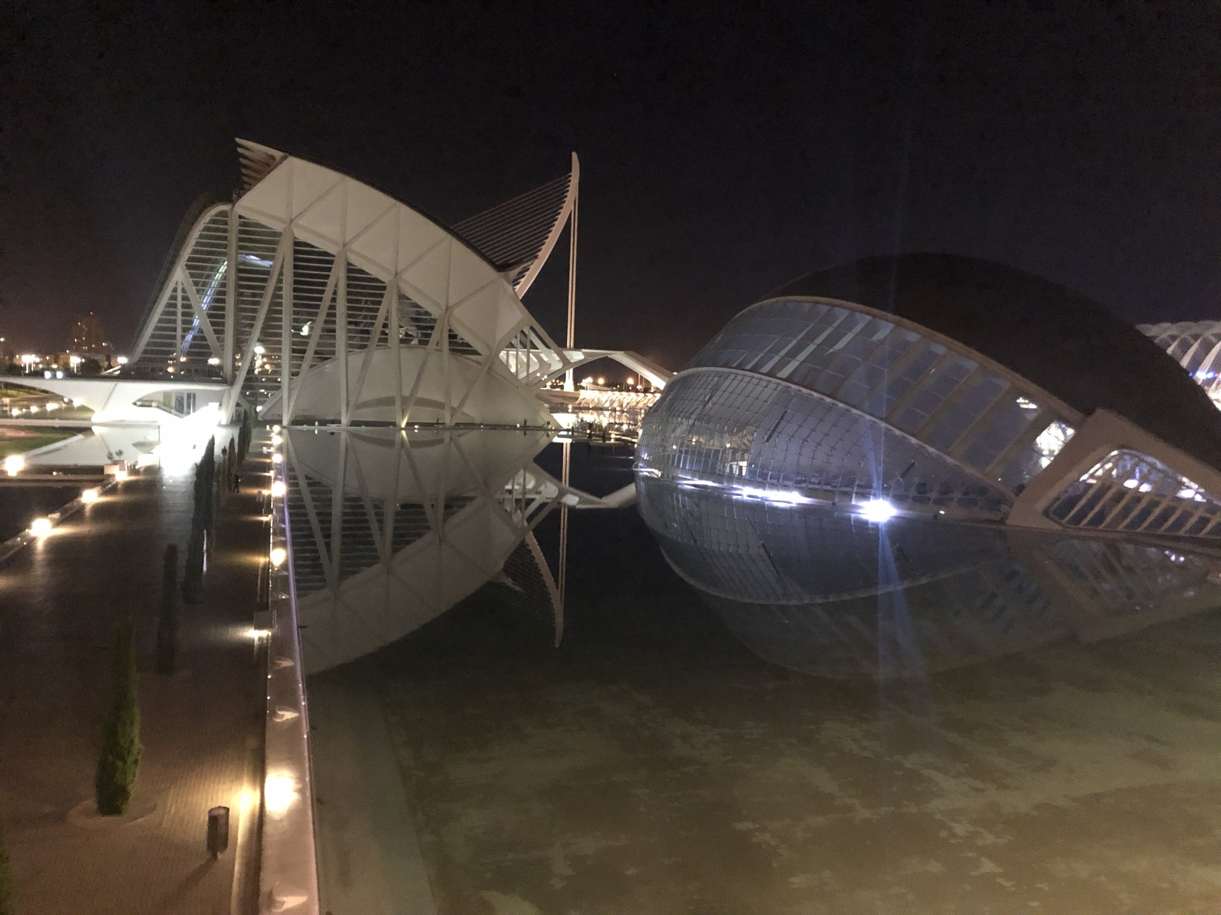 The City of Arts & Sciences looks like a spaceship no matter what time of day.