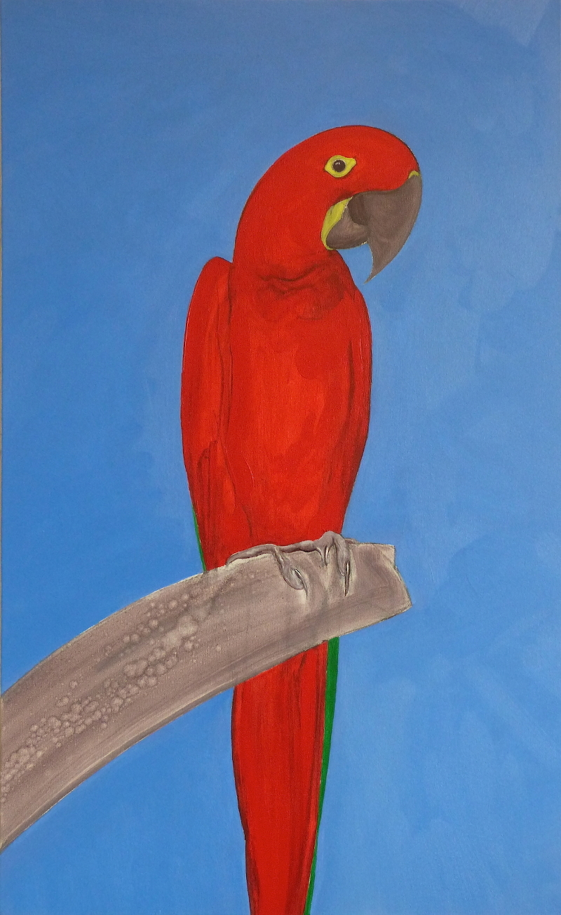Fuschia Macaw (from A Theory of Colours for Parrots)