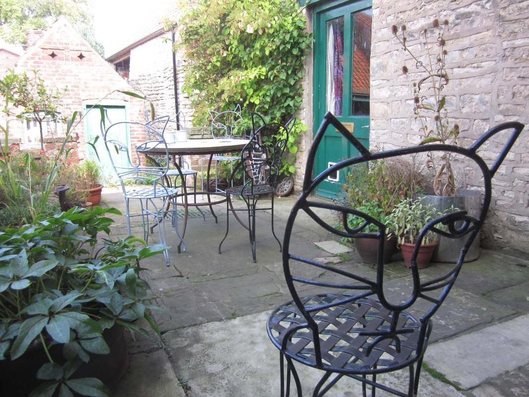 cat chair patio-800.jpg
