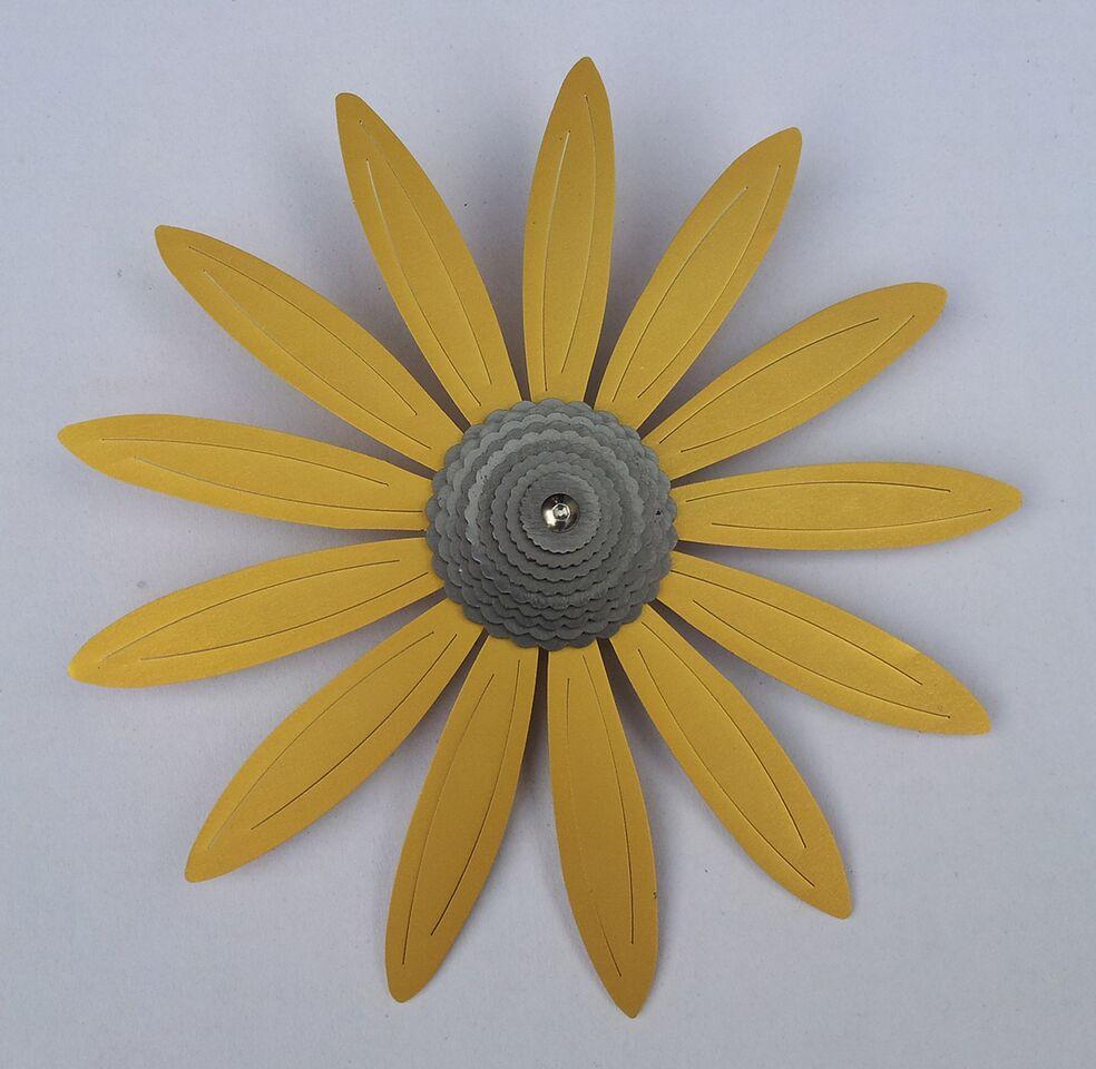 Echinacea Gold