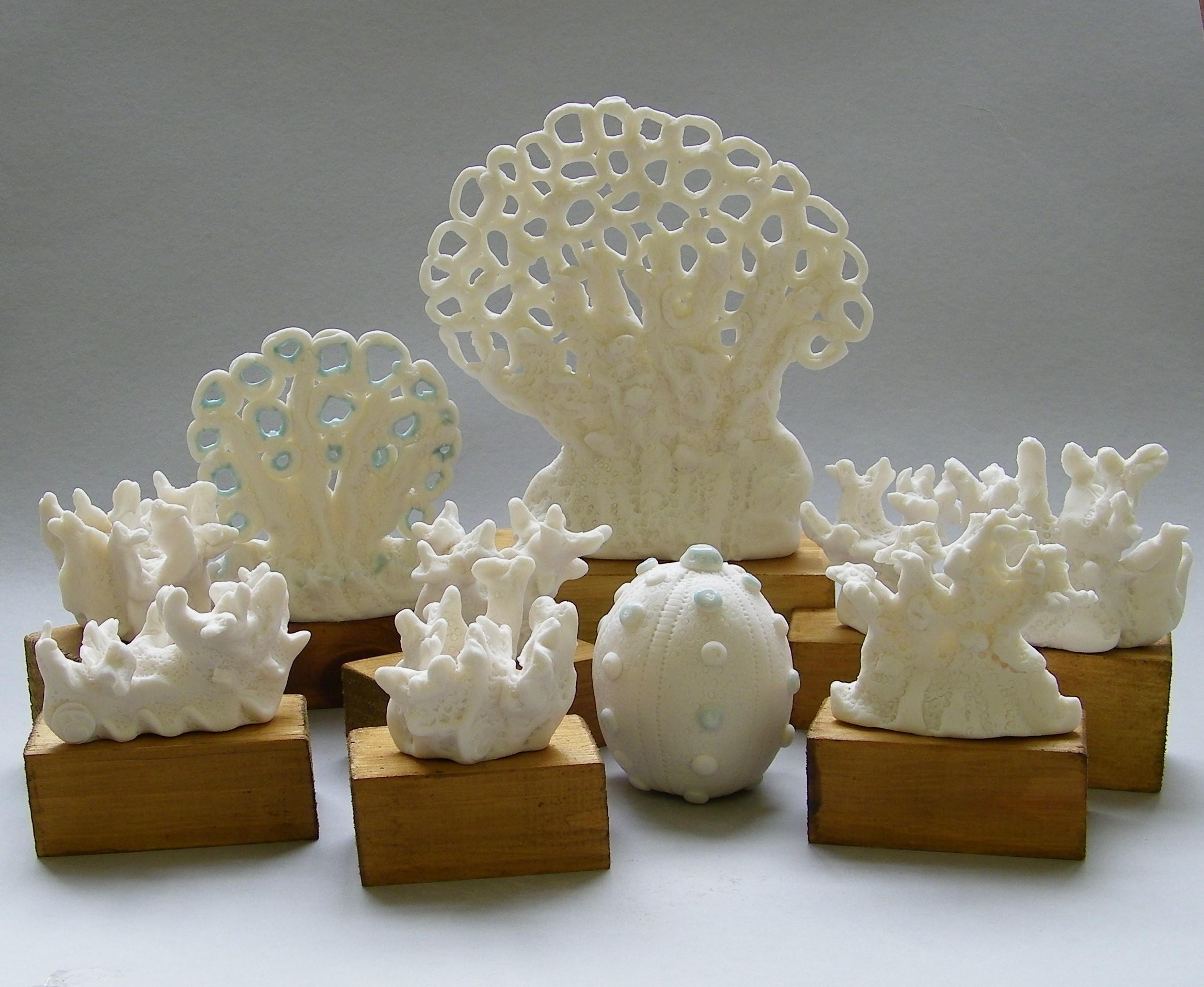 Eleni Tsakalou  Coral Series