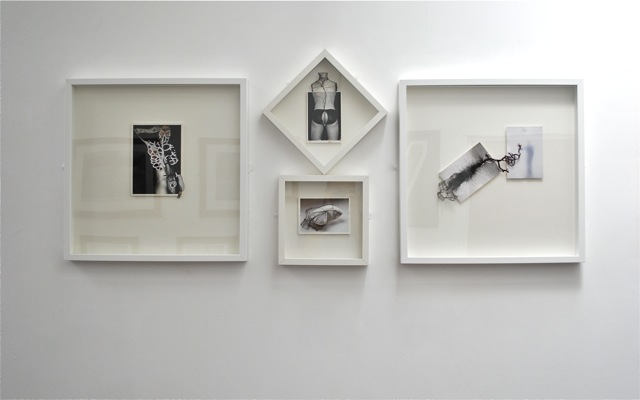 Installation view of Torso series with the piece Raw.jpg