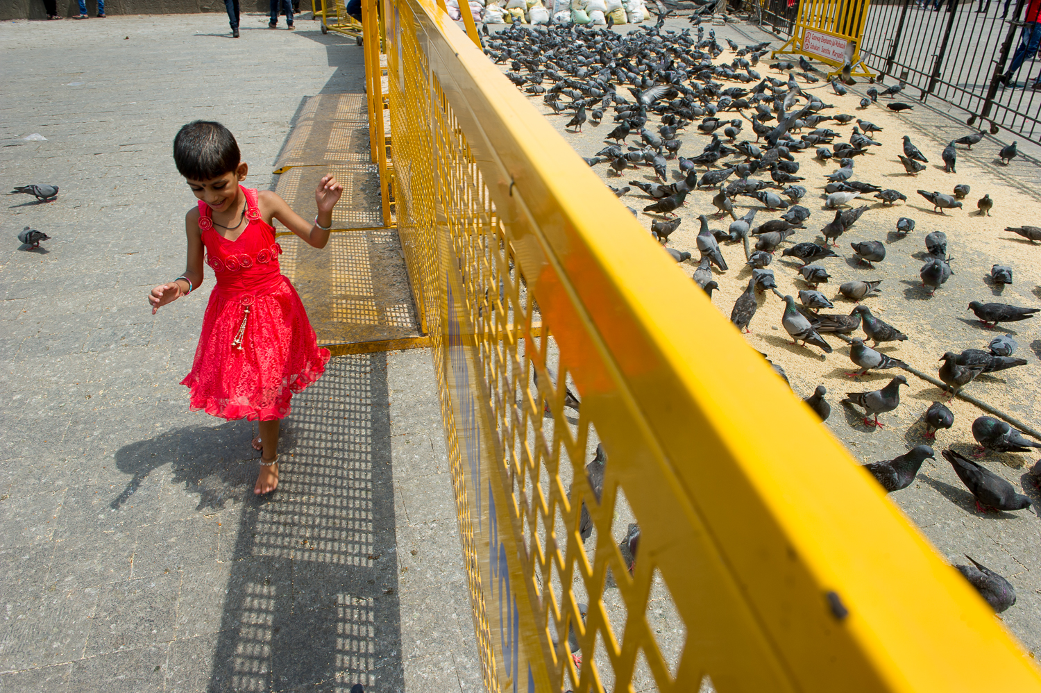 Girl feeding pigeons, Gateway to India, Mumbai 2019