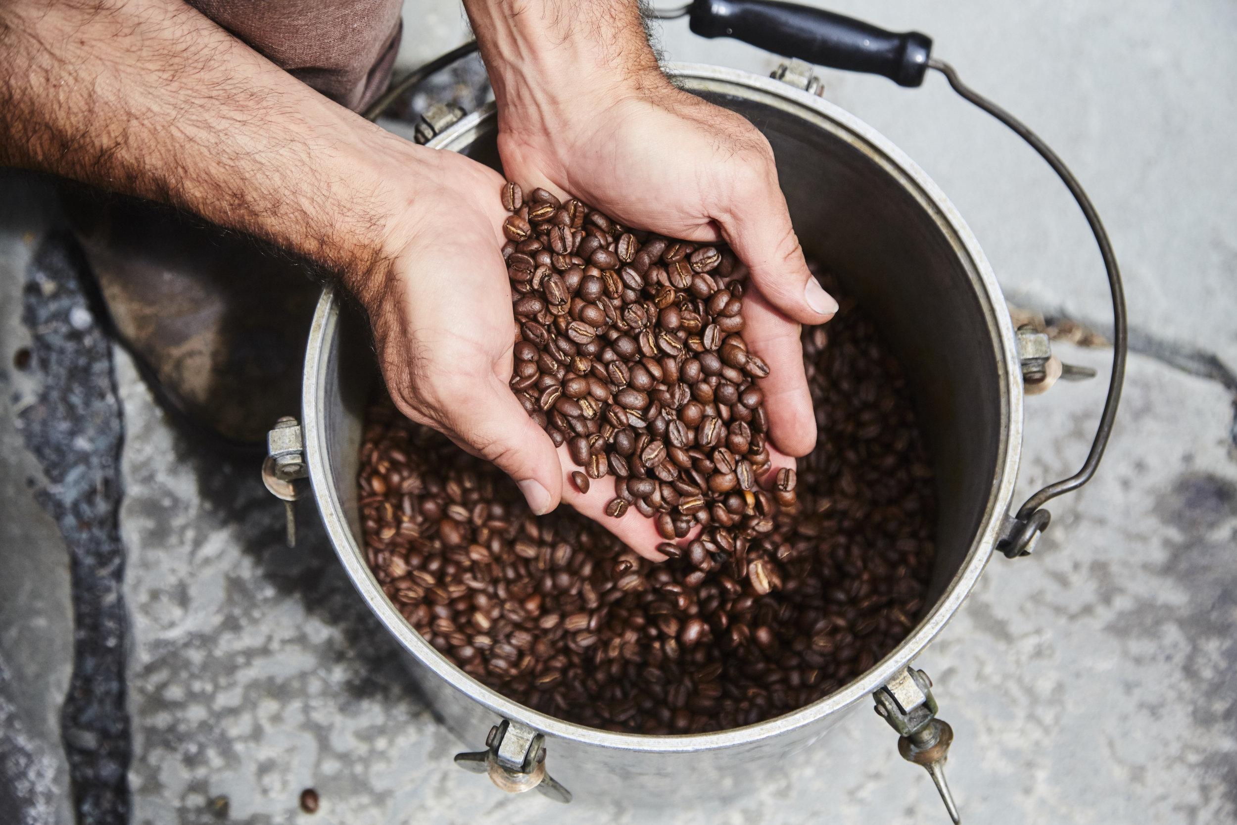 catskills coffee