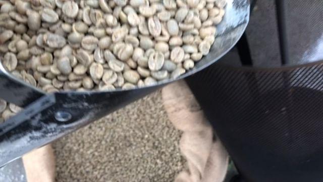 Happy Saturday! #coffee #coffeeroasters #nicaragua #bovinany #fosterbuiltcoffee