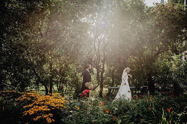 Insåg idag att jag bara har ett bröllop kvar att fota för säsongen- blev chockad, det har verkligen gått i ett denna sommar och jag har fått dela såna otroliga upplevelser med mina bröllopspar!  Har levt i denna bröllopsbubbla flera månader i sträck. Bröllopsmöten för kommande sommarbröllop, bröllop i @larssonslada , bröllopsvisningar i ladan, bröllopsförberedelser i ladan på fredagar, fota bröllop på lördagar och på söndagen tillbaka ladan och säga hejdå till ladans bröllopspar.  Det kallar jag bröllopsbubbla, en ganska lyxig bubbla att vara i 💓 Ser lite fram emot denna höst där jag framförallt kan hinna komma i fas med all redigering, inte den där känslan av att ligga efter hela tiden. Och att ha möjlighet att ha flera dagar ledigt i rad, har inte blivit så många såna denna sommar och kommer fira den första bröllopslediga helgen med fina vänner i oktober- längtar! . . . #nordiskabrollop #nordiskabröllop #nordiclovestories #bröllopsfotograf #weddingphotographer #weddingphoto #bröllop2020 #bröllop2019 #bröllop #sistersinlawmagazine #wayupnorth #nikon #nikonsweden #autenticlovemag #stockholm #rådhuset #polisparken #stockholmwedding #weddingstockholm #swedenwedding #weddingplanner