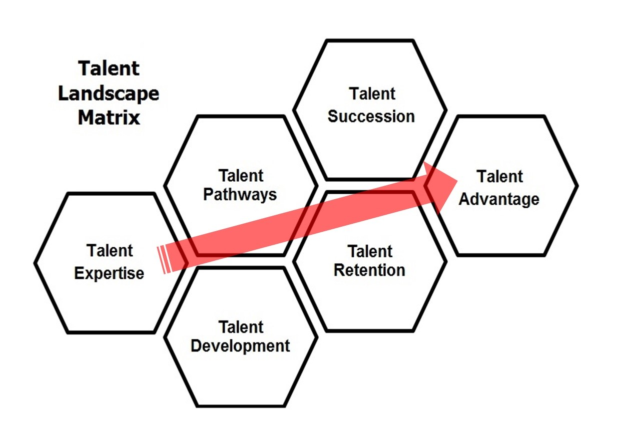 Talent Landscape Matrix