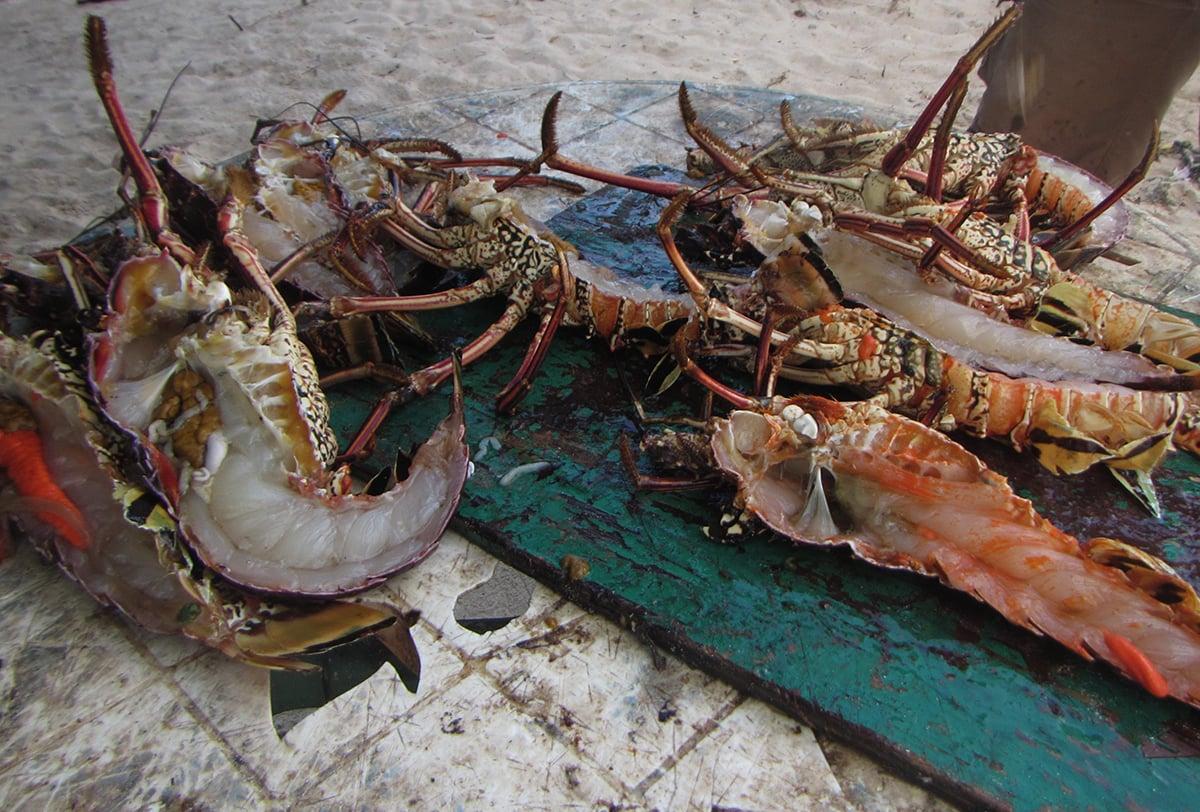 Lobster dinner at the beach