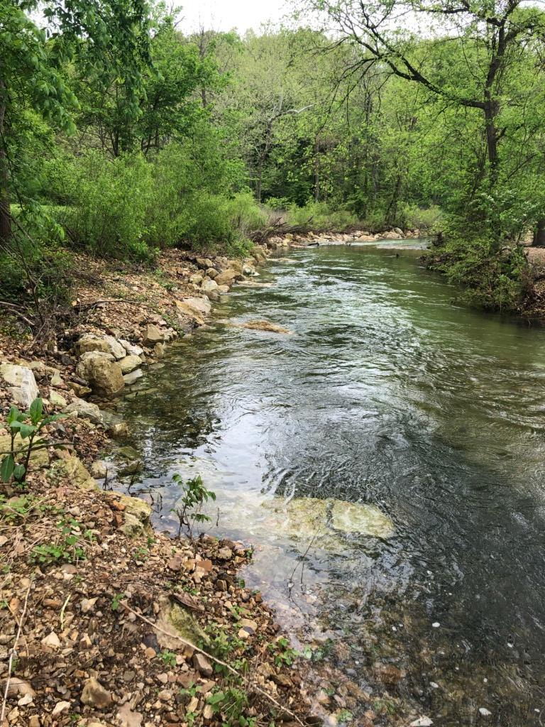 Restoration on the Little Sac River