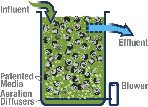 Flow enters the fully-aerated tank and encounters the biofilm-coated media. Coarse effluent screens prevent the patented BioPortz media from leaving the tank. Depending on the configuration, multiple tanks in series can be used to meet low effluent requirements and/or address several different contaminants and nutrients.