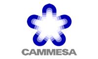 CAMMESA 200x120.jpg