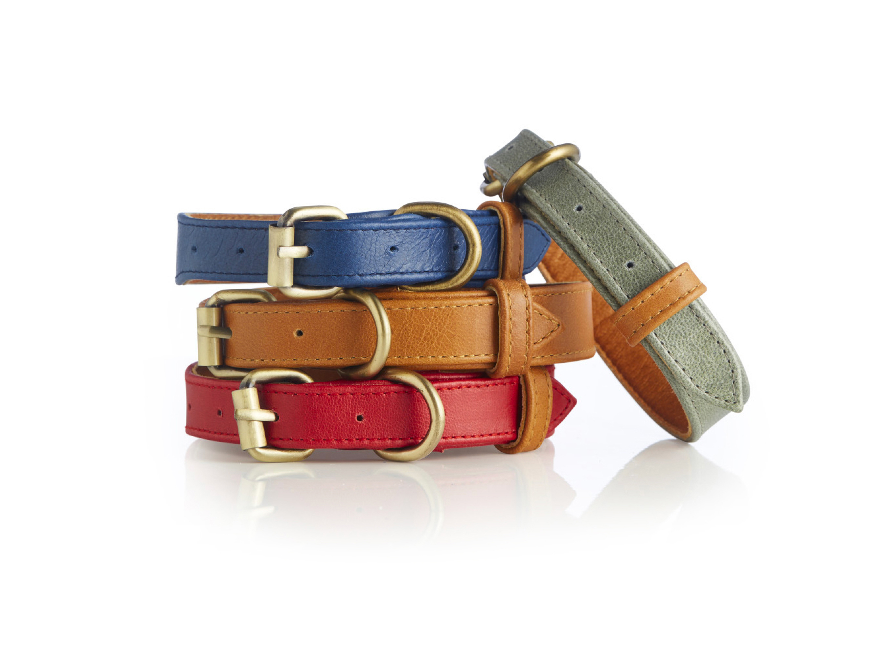 Coastal Collection Dog Collars