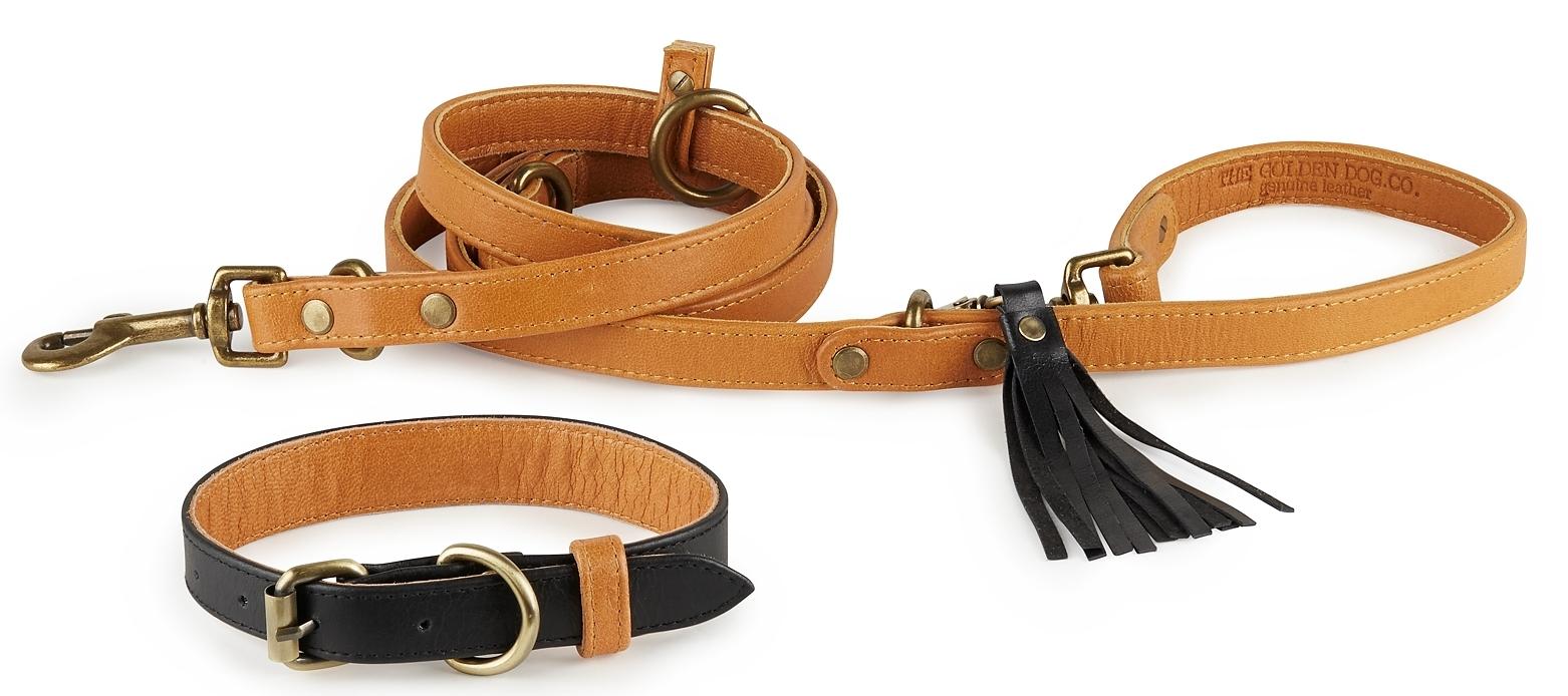 Hatteras Collar + Leash