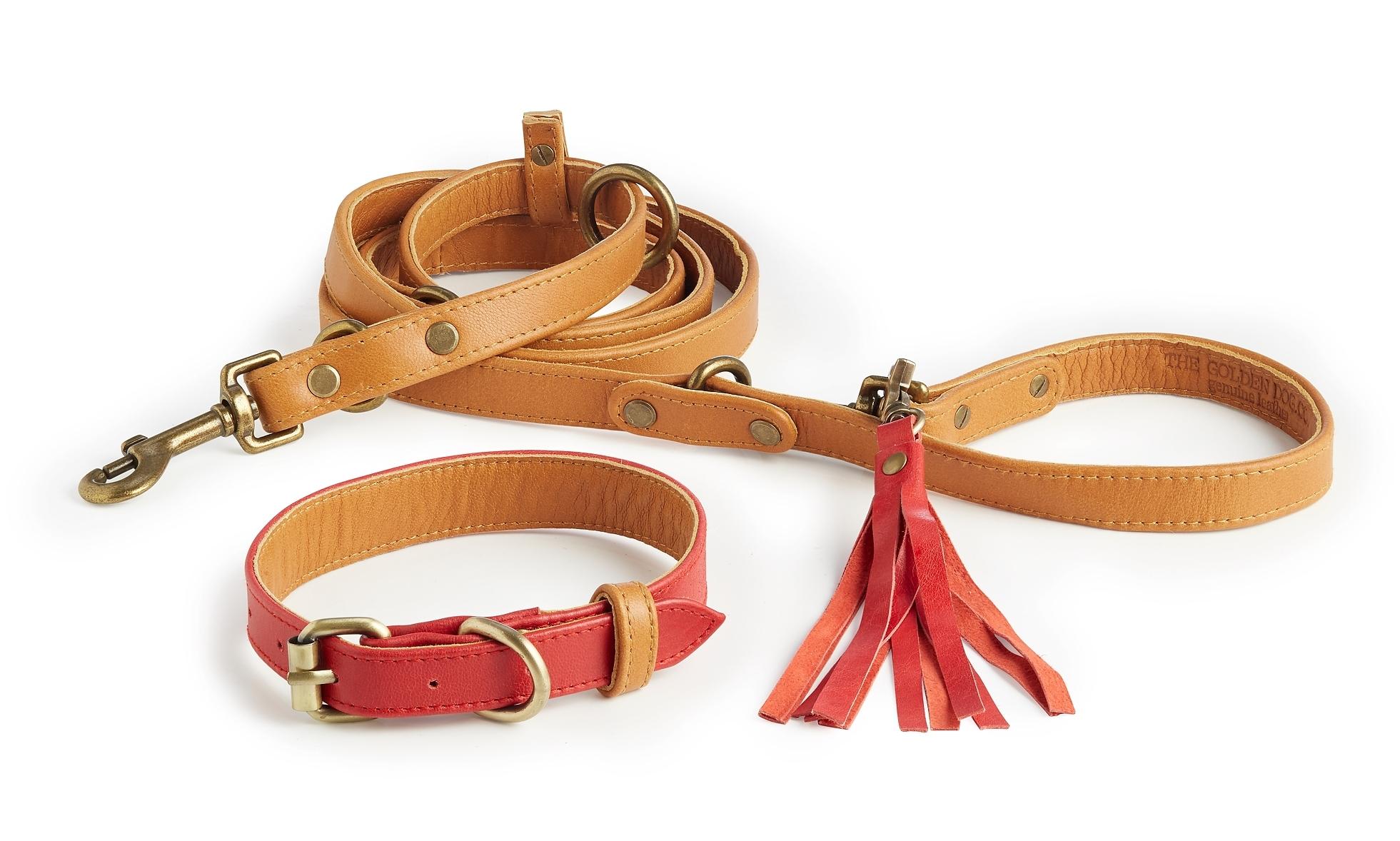 Coronado Collar + Leash