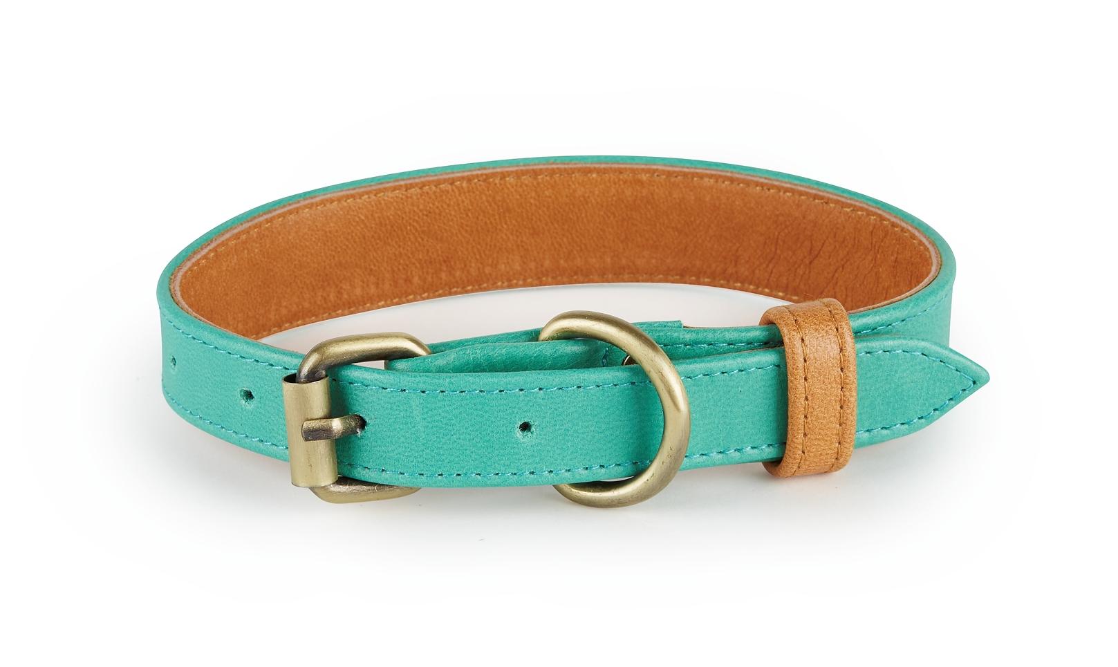 Laguna Turquoise and Tan Leather Dog Collar